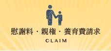 慰謝料・親権・養育費請求